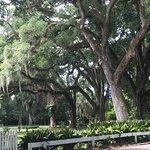 Photo de The Myrtles Plantation
