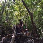 Angthong National Marine Park Foto