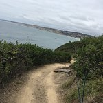 Make sure to take the hike from La Jolla beach to La Jolla Cove! Very nice and leisure walk as y
