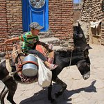 a kid ridding a donkey in Kandovan