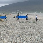 surf boarders