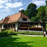 Maribor city park and the three pond area offers peace and tranquility within the busy city cent
