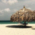 Photo of MVC Eagle Beach