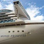 Diamond Princess Foto