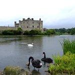 Leeds Castle Foto
