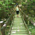 puente de madera - tramo final.