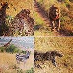 Photo of Explorer Kenya