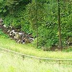 Ramada Resort Kranjska Gora Foto
