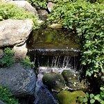 Fountain in Butterly Garden