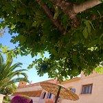 Foto de Rocinante Hotel