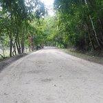 el camino hacia el parque