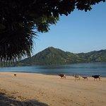 Photo de The Lodge @ Belongas Bay