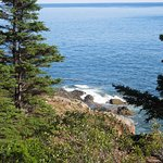 Photo of Great Head Trail
