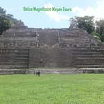 """Massive Structure at Caracol known as """"Canna"""""""