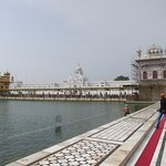 Line into Golden Temple