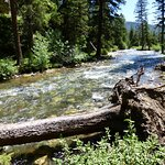 Photo of Pebble Creek Campground