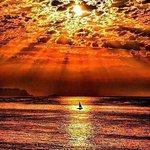 FB_IMG_1435686336855_large.jpg
