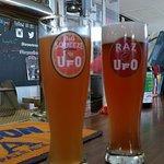 Harpoon Brewery Photo