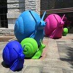 Snails in the reading garden