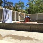 Foto de Vichy Springs Resort