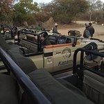 Foto de Kapama Southern Camp