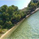 Beautiful natural Sitonia from Anthemus sea...