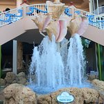 Pink Shell Beach Resort & Marina Foto