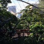 Foto di Parco di Hong Kong