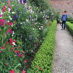 Photo de Trengwainton Garden
