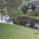 Photo of Shorewalk Vacation Villas