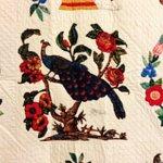 Close up of bird on quilt