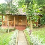 Thekkady - Woods n Spice, A Sterling Holidays Resort Foto