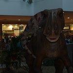 Exposição de Dinossauros