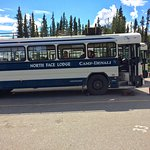 Bus from Denali National Park entrance to Lodge