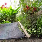Private Hammock for two - lovely way to spend time