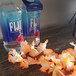 Don't touch the fiji water if you want to spend $7. Lol.