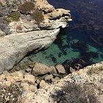 Point Lobos lagoon