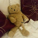 Scottish Tablet in room on arrival (Horacethealresfordbear.com)