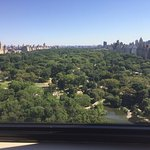 Breathtaking Central Park View