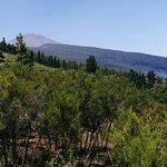 Foto de Valle de La Orotava