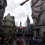 Harry Potter.