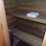 Dry Sauna in the bathroom