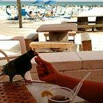 Photo of Aquatica Hotel Restaurant