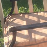 rusted patio furniture and nasty cushions