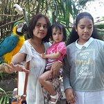 Bali Safari & Marine Park Foto