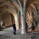 Foto di Chateau de Chillon