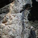 Chiang Mai Rock Climbing Adventures Foto