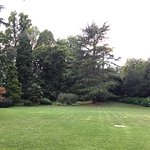 Photo of Dan Garden Lounge