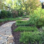 A herb garden to stroll in.