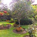 Boquete Garden Inn Foto